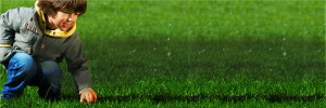 The off-season is crucial to control crabgrass in the future