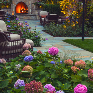 Greenwise Chicago S Leading Organic Lawn Care Amp Landscape