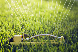 Proper watering will keep your lawn healthy during the hot summer months while staying eco-friendly way