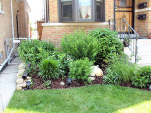 Even a small, inexpensive rain garden can significantly reduce flooding and runoff