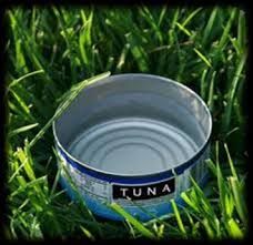"""Use a tuna can, or similarly sized vessel, to measure 1"""" of water."""