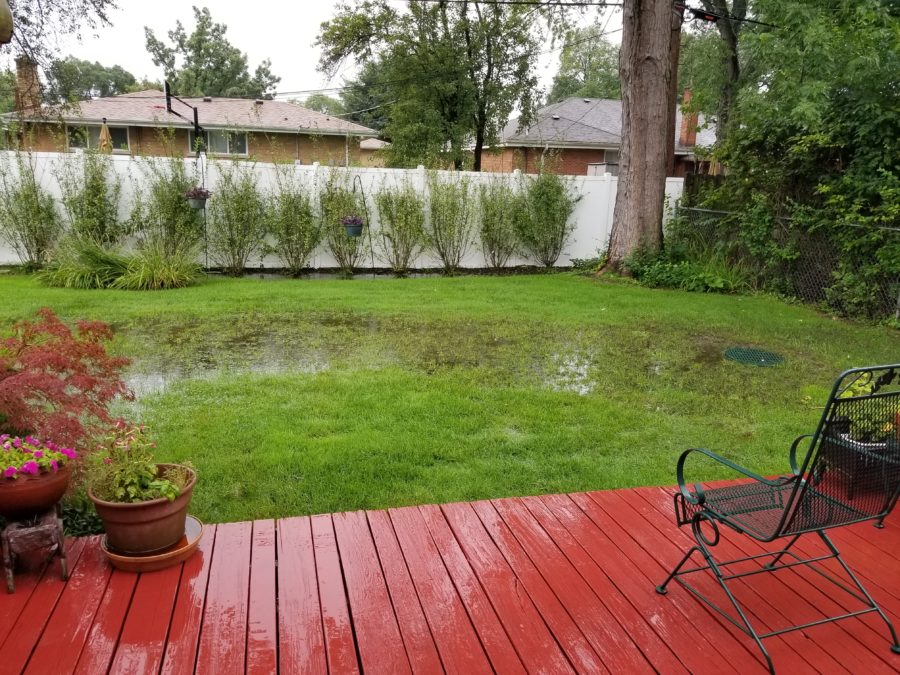 flooded back yard before Greenwise fixed the drainage issue