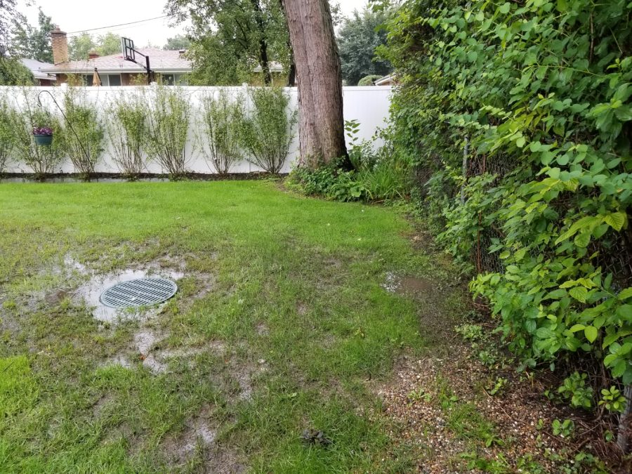 Drainage issues before Greenwise.
