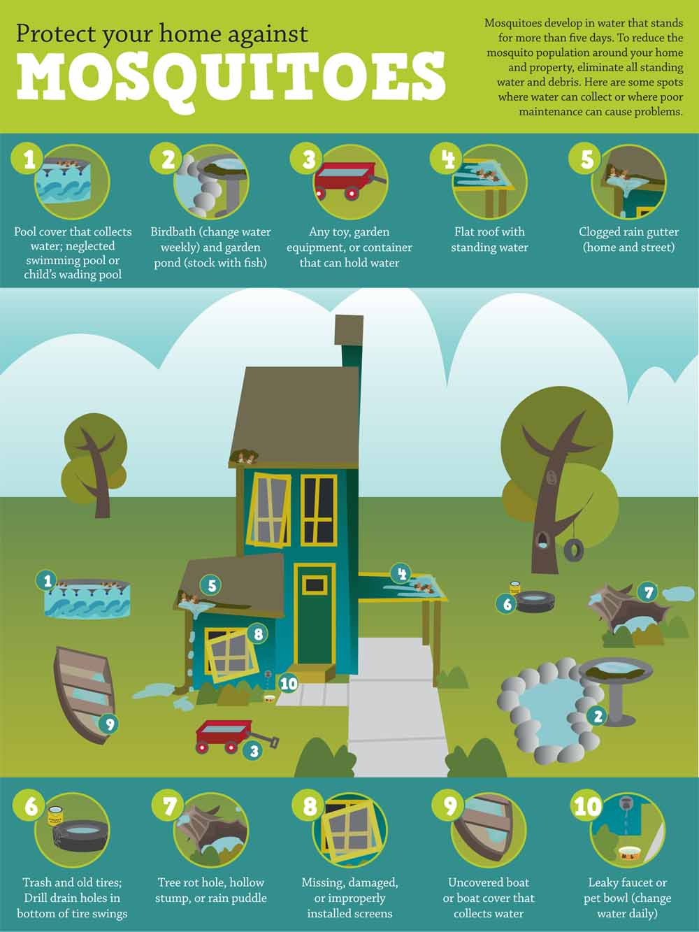 Protect Your Home Against Mosquitoes