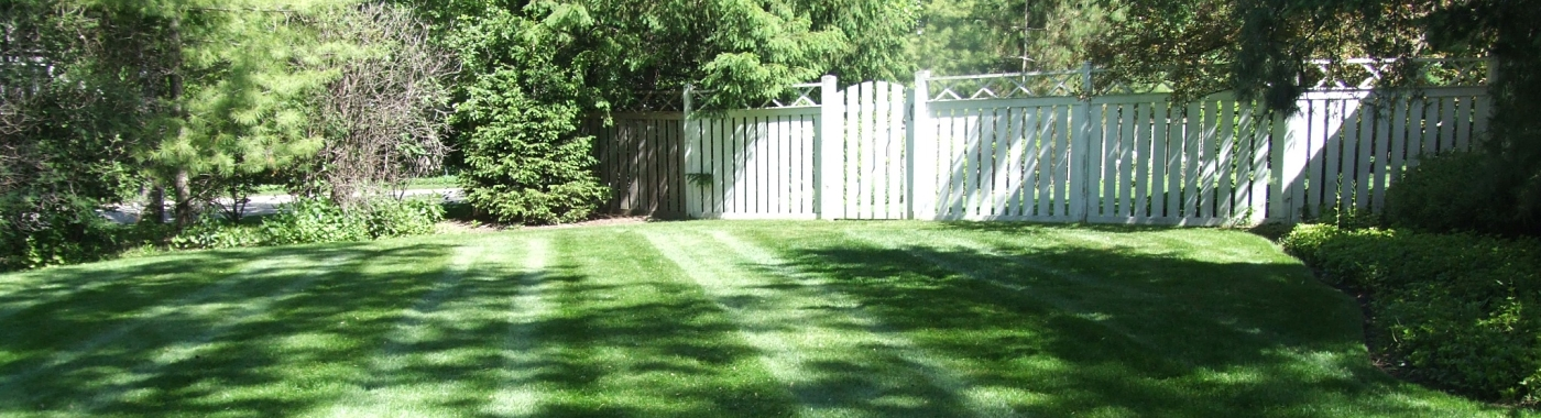 Organic Lawn Care and Fertilization