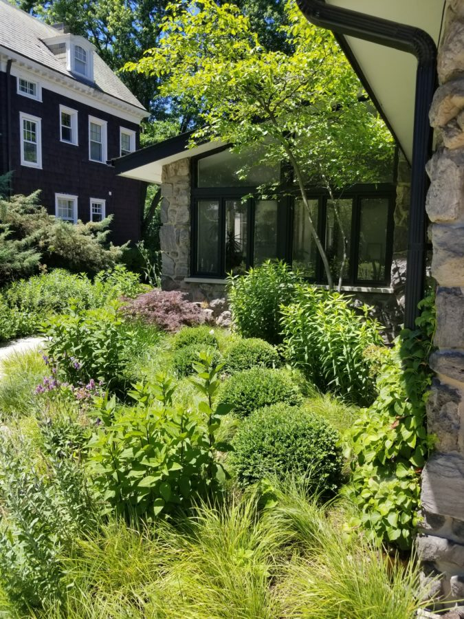 Greenwise Meets Mid Century Modern In A Low Maintenance Landscape