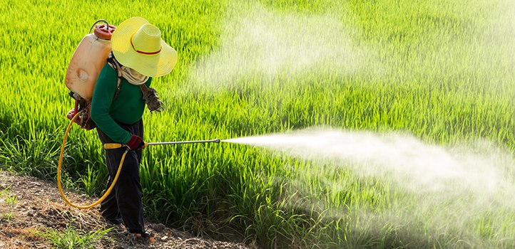 Pesticides are largely contributing to erectile dysfunction and the downfall of male fertility.